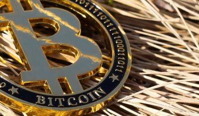 Celcius Network CEO'su: Bitcoin 100.000 Dolar Seviyesine Gelecek!