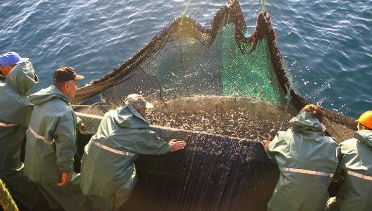 Marmara'da Küçük Kıyı Balıkçıları için Verilen Destekler Artırıldı
